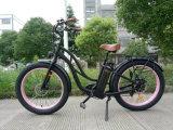 26*4.0インチ48V 500Wの全販売のペダルエンジンの電気バイクのための最新の電気自転車の方法山Eのバイク