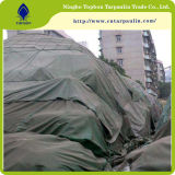 Eben beschichtete modernes Kurbelgehäuse-Belüftung Plane für Zelt-Gebrauch