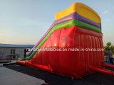 熱い販売膨脹可能な水スライド、空気堅いプールが付いている膨脹可能な水スライド、膨脹可能な二重車線水スライド