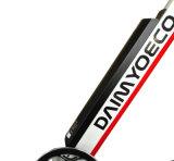 Bewegliches faltendes E Fahrrad der Miniform-mit Lithium-Batterie