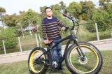 2017 bester fetter Gummireifen-elektrische Fahrräder Form Soem-48V für Erwachsenen