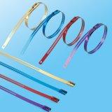De kleurrijke Band van de Kabel van de Haken van de Ladder van het Roestvrij staal Enige