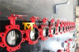 Tipo válvula do talão de borboleta com a haste dois PCS (CBF03-TL01)