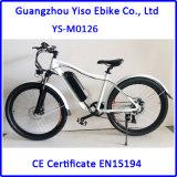 350W 48V 전기 산악 자전거, /off 도로 먼지 자전거