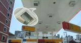 bulbo do milho do diodo emissor de luz do retrofit 80W de cETLus/ETL para o uso do quadro de avisos da estrada