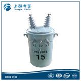 15kv Transformator van de 100kVA de Olie Ondergedompelde Macht