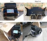YC Capacitors Start Induction Motor 또는 Single Phase Motor