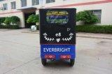 Электрическая рикша Trike 3 колес