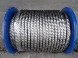 철강선 Rope (Galvanized 철강선 밧줄)