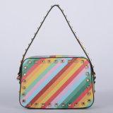 Nuove borse delle signore dell'unità di elaborazione della banda del Rainbow di disegno (P6200)