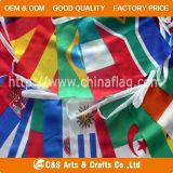 Вымпел изготовленный на заказ печатание национальный рекламируя шнурует флаг/знамя