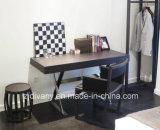 Стул самомоднейшего дома мебели деревянный кожаный (C-42)