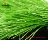 La plastica erba per lo sguardo multiuso, durevole e naturale