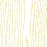 Legno di formazione del PVC laminato stagnola di disegno moderno termo