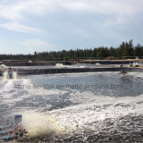 Gang-Bewegungsfisch-Garnele-Teich-Belüftungsanlage der Qualitäts-9-Spline