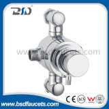 Exposed escondido Thermostatic Shower Valves com Round Plate