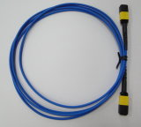 Data CenterのためのMPO/APC-MPO/APC Fiber Optic Cable