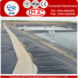HDPE Geomembrane 0.5mm (500g/sqm) Have Two Protector 200g/Sqm Polyester Geotextile