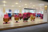 Sillas públicas del auditorio de los muebles con los apoyabrazos de madera sólidos