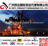 Ocean barato Freight From China a Malasia