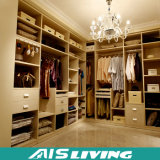 Я подгоняны после того как я построены в прогулке шкафа в мебели шкафа (AIS-W034)