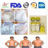 Heißer verkaufender Steroid Hormon-PuderNandrolone Decanoate Deca