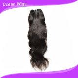 Quercyの毛の100%年のバージンのRemyの毛のWeftブラジルの自然な波の毛