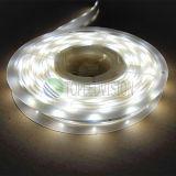 Luz de tira do diodo emissor de luz do brilho elevado 60LEDs/M SMD5050 RGBW com Ce, RoHS