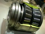 SKF Roller Bearings / Taped Bearing