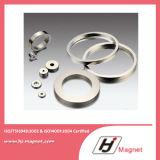 Anello magnetico personalizzato del neodimio del motore di figura a magnete permanente