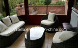 4 피스 Backyard Wicker Rattan 안뜰 Outdoor Furniture