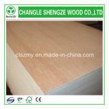 Bintangor barato Plywood para Furniture e Decoration