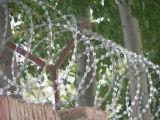 Het hete Prikkeldraad van het Scheermes van de Verkoop/Kabel de Met weerhaken van het Scheermes