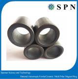 Anelli del magnete del ferrito per gli anelli anisotropi sinterizzati motore