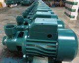 1.5inch 출구 표면 국내 전기 수도 펌프 0.75kw/1HP (QB-80)