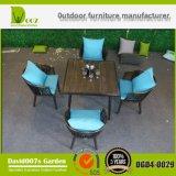 Mobília ao ar livre que janta a mesa de centro e a cadeira Dgd4-0029 ajustado