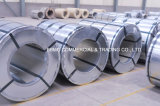 Sachverständiger Lieferant des chinesischen Stahls walzte Stahlring mit gutem Preis kalt