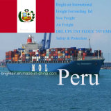 Trasporto del mare del carico all'ingrosso/contenitore della nave da carico dalla Cina a Lima, Callao, Perù