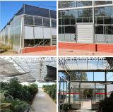 Casa verde de construção de aço/armazém vegetal (DG1-024)