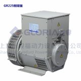 40kw Gr225 Stamford Type Brushless Alternator pour Generator Sets
