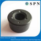 Anéis Multipole do ímã da ferrite permanente para os motores da indústria