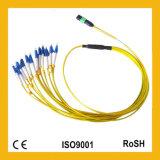 Perda de reflexão elevada da densidade elevada da fibra com cabo de correção de programa da fibra óptica do APC MTP/MPO
