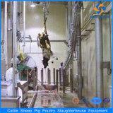 Machines d'équipement de ligne d'abattage de bétail de Cpmplete