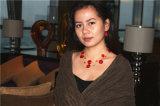 Les talons de couches et le jeu à chaînes de collier et de bijou avec le rouge Handcraft près