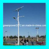 Luz de calle solar 20W 25W 32W 40W 50W 60W (GPA-DL-124)