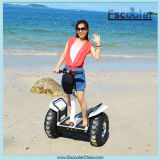 Li Battery Self Balancing Two Wheeled Scooter da vendere