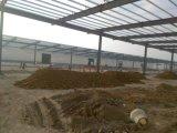 Prefab Workshop&Warehouse стальной структуры