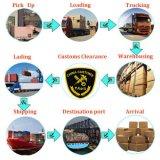 Remetente barato do transporte do frete de mar de LCL FCL Logístico Companhia de China a Poland