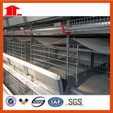 가금은 제조자에게 닭장을%s H 유형 층 닭 감금소 농기구를 공급한다