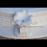 De witte Pool van Carrara voor Decoratie mpl-171 van het Huis